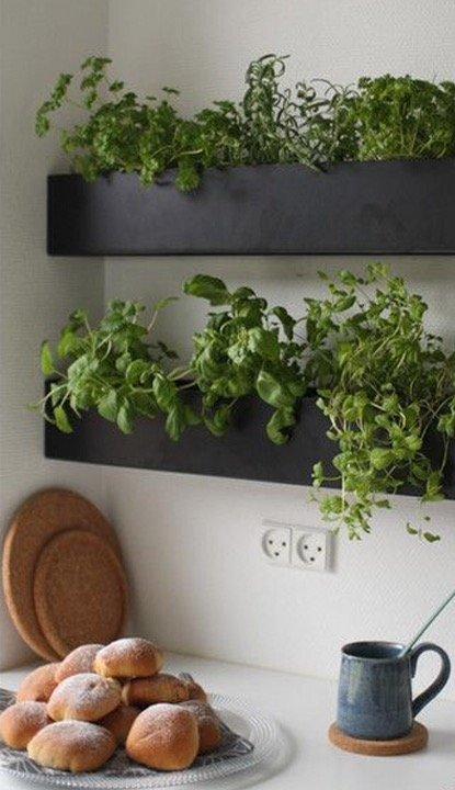 """Esempio di erbe aromatiche in cucina inserite dentro due mensole scatolate a """"box"""""""