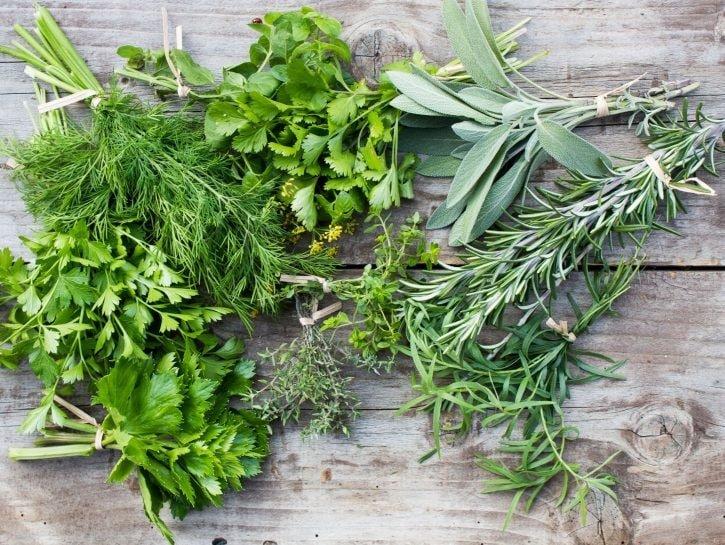 Alcune varietà di erbe aromatiche in cucina fresche appena colte