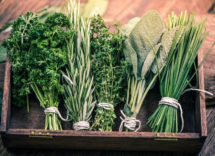 Alcuni mazzetti di erbe aromatiche